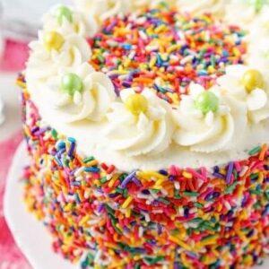Rắc trực tiếp Chocolate cốm lên bánh để tạo lớp trang trí đầy sắc màu